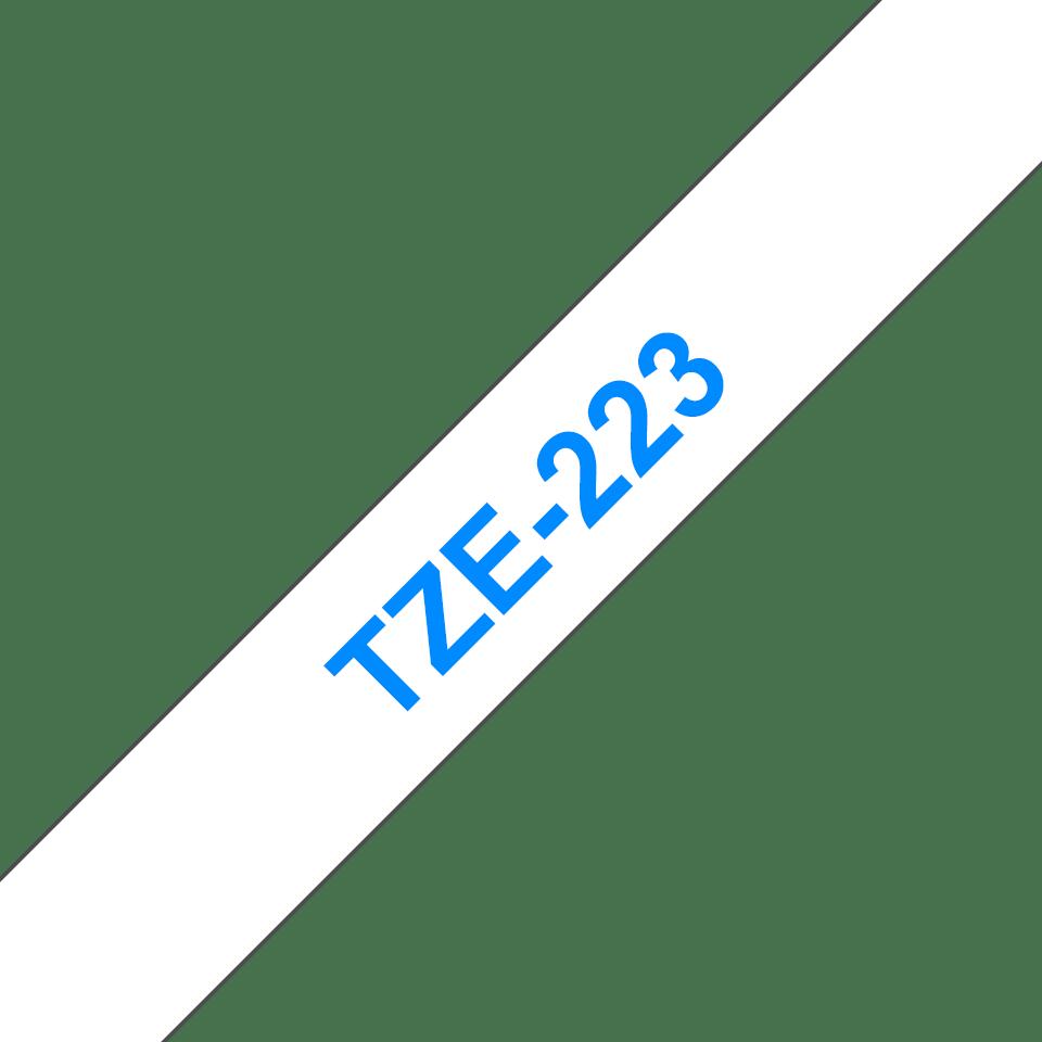 TZe223_main
