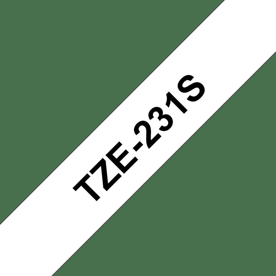 Schriftband TZe-231S 2