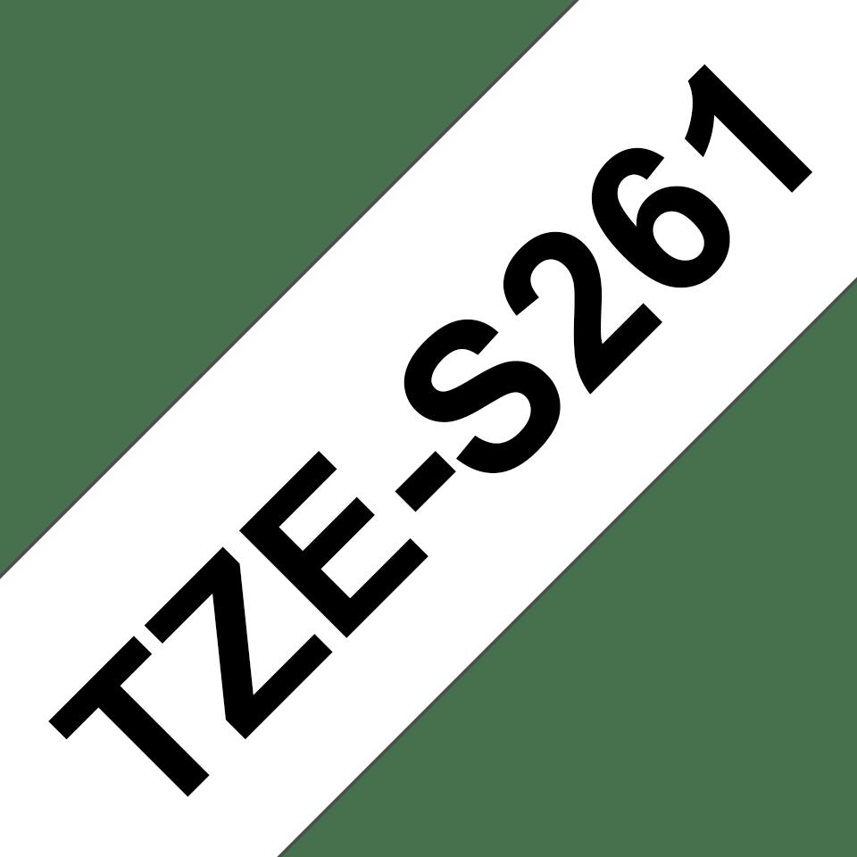 TZeS261_main